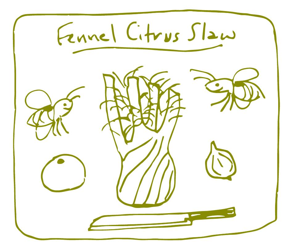 Recipes_FennelCitrusSlaw_edited
